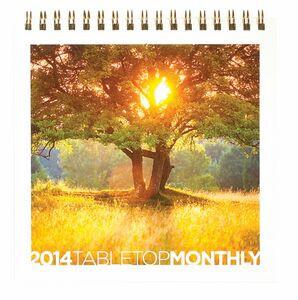 "DesktopPlanners™ - TableTop Monthly Planner (6""x6"")"